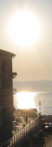 Mos-Sea-Color.jpg